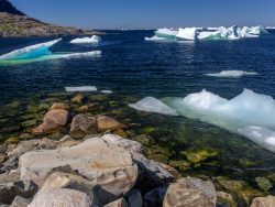 small icebergs in bay; Fogo Island, Newfoundland