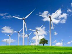 wind turbines farm on green field